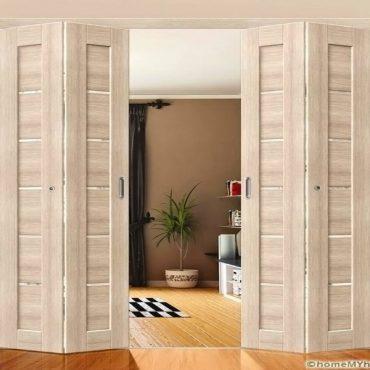 Дверь книжка двойная